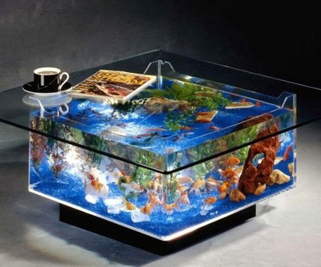 Coffee Table Aquarium