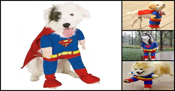 super dog costume - pet costumes for dogs