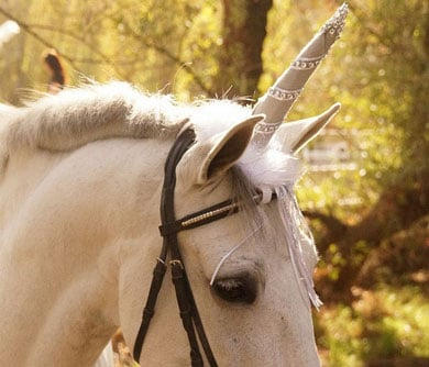 Unicorn Horse Costume