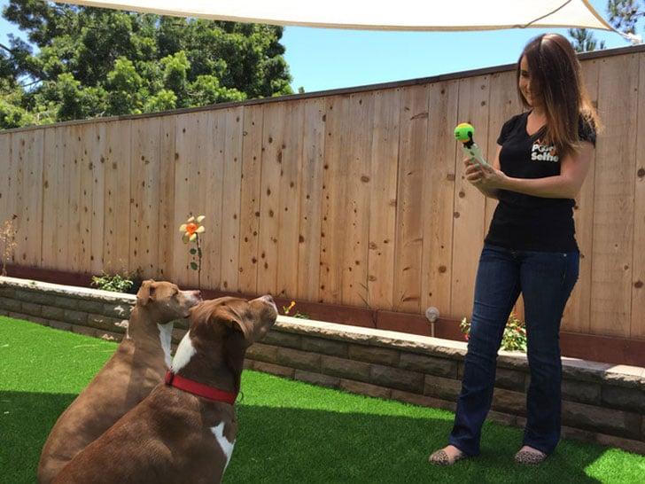Dog-Selfie-Smartphone-Attachment