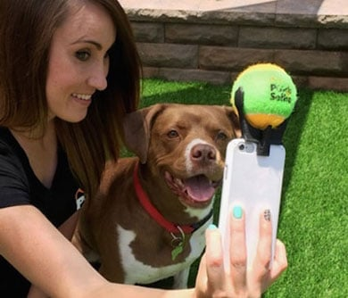 dog selfie smartphone attachment