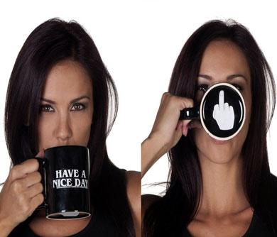 have a nice day middle finger mug