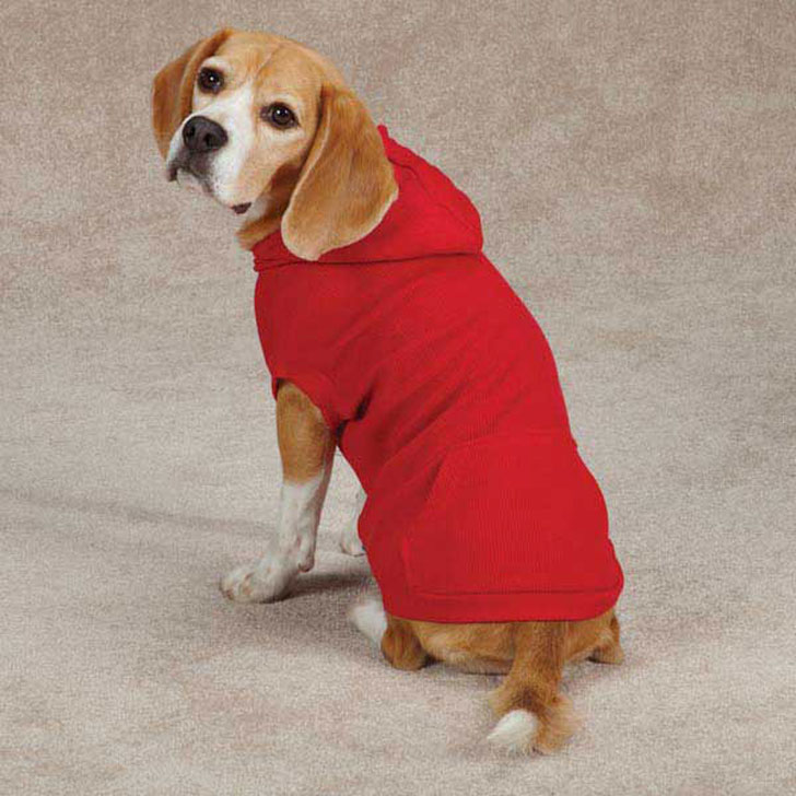 pet hoodies for dogs and cats