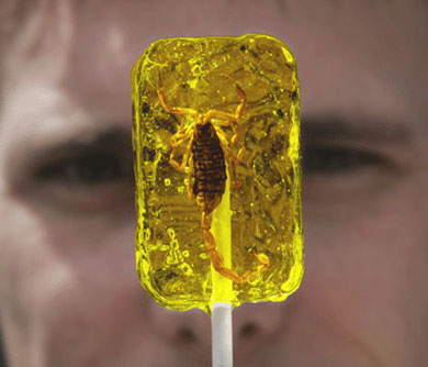Insect Lollipops