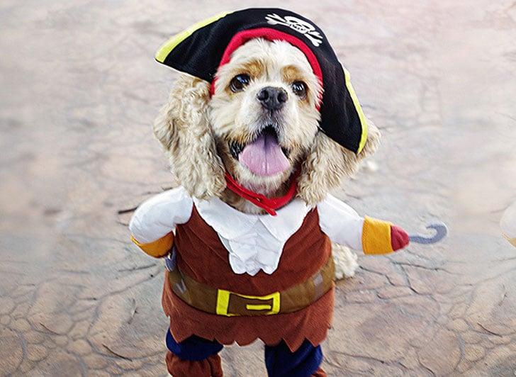 Pirate-Pet-Costume1