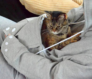 The Pet Pocket Hoodie