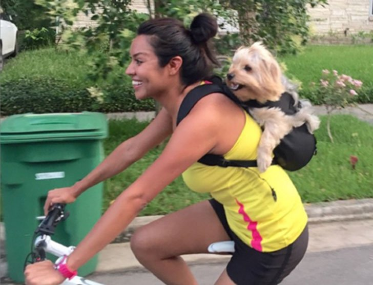 Dog Carrying Backpack
