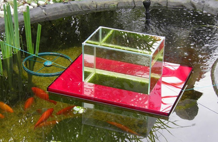 Floating fish pond observatory awesome stuff 365 for Floating fish pond