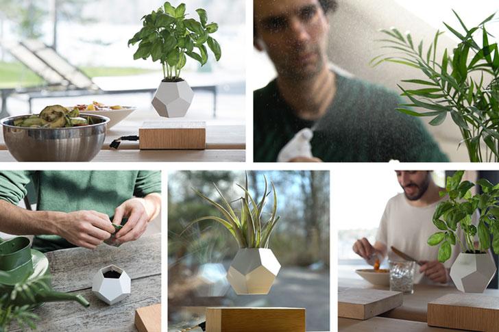 Zero-Gravity Plant Growing System