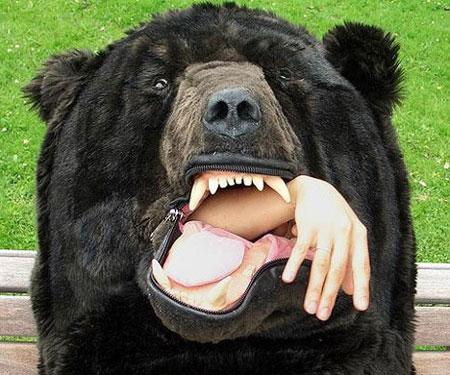 bear-sleeping-bag