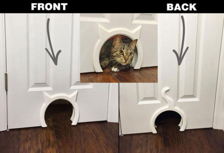 Kitty pass interior cat door awesome stuff 365 - The kitty pass interior cat door ...