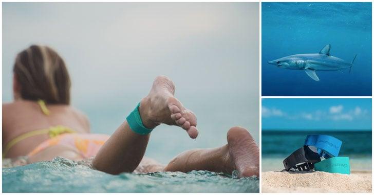 shark-deterrent-bracelet