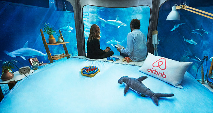 Under Water Shark Room Experience