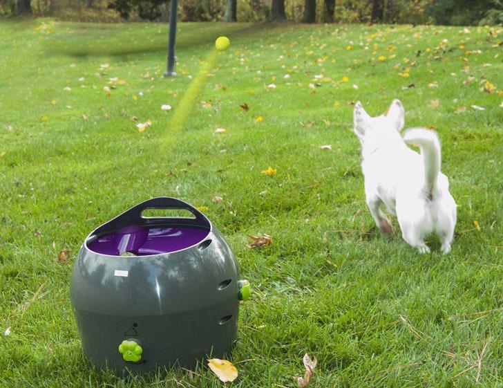 coolest dog gadgets - automatic ball launcher