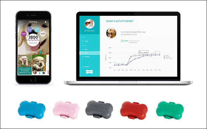 coolest-dog-gadgets---fit-bark-dog-monitor-and-app