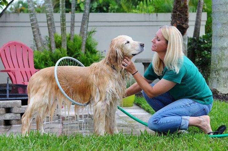 coolest-dog-gadgets---ultimate-dog-washing-device