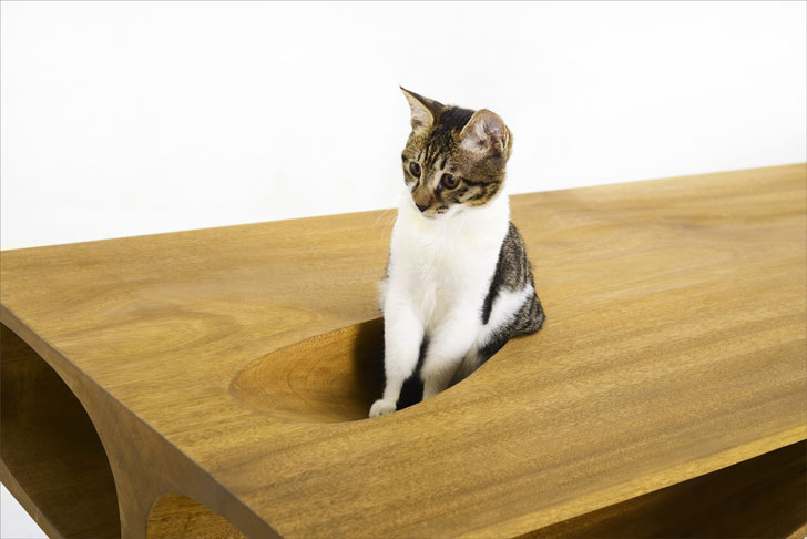 Designer Cat Table Desk Awesome Stuff 365
