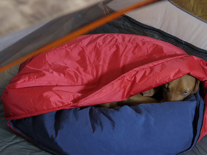 Portable 2-in-1 Dog Bed Sleeping Bag
