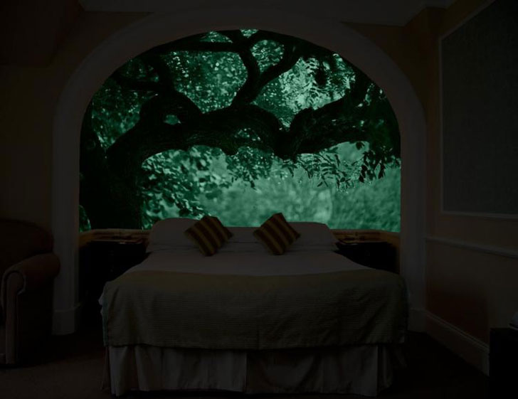 Glow In The Dark Wall Murals Awesome Stuff 365