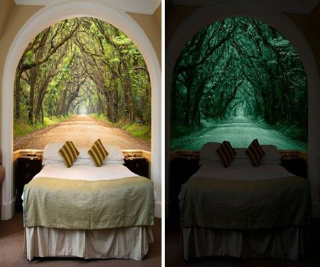 Elegant Glow In The Dark Wall Murals Part 5