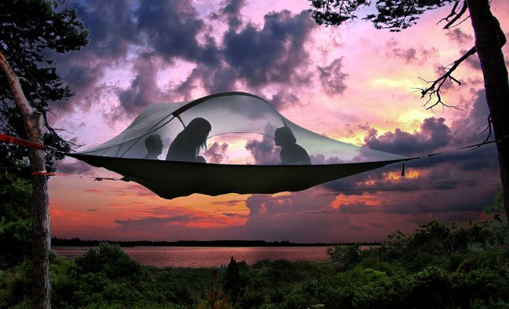 stingray tree tents