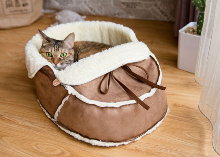 Designer Shoe Shaped Cat Bed