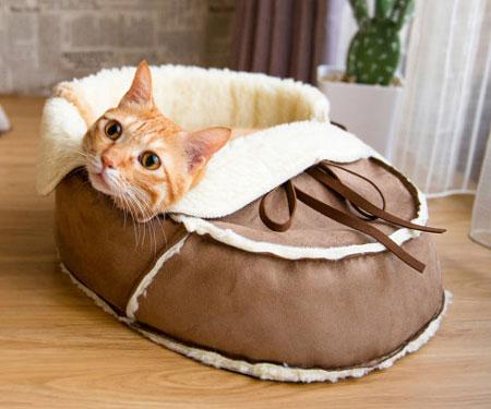 Designer Shoe Shaped Cat Bed