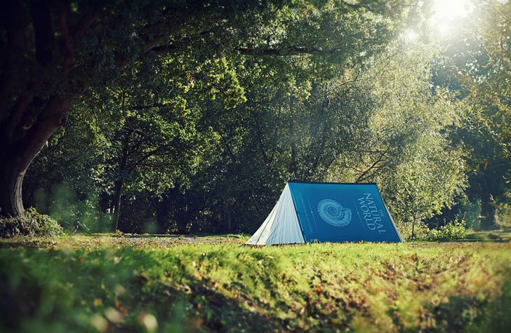 THE BOOK TENT - COOL TENTS FOR FESTIVALS AND CAMPING