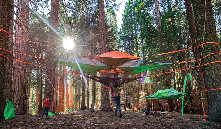 stingray tree tent - cool tents for camping