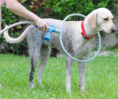 360 Degrees Dog Shower