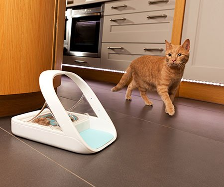Microchip Smart Pet Feeder