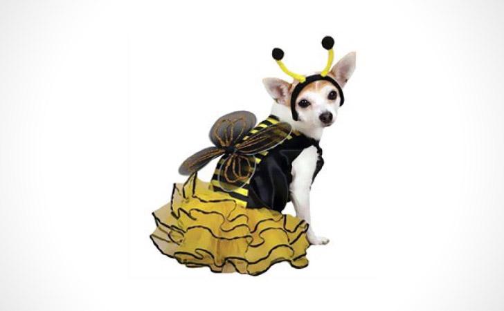 Buzzing Bee Dog Costume