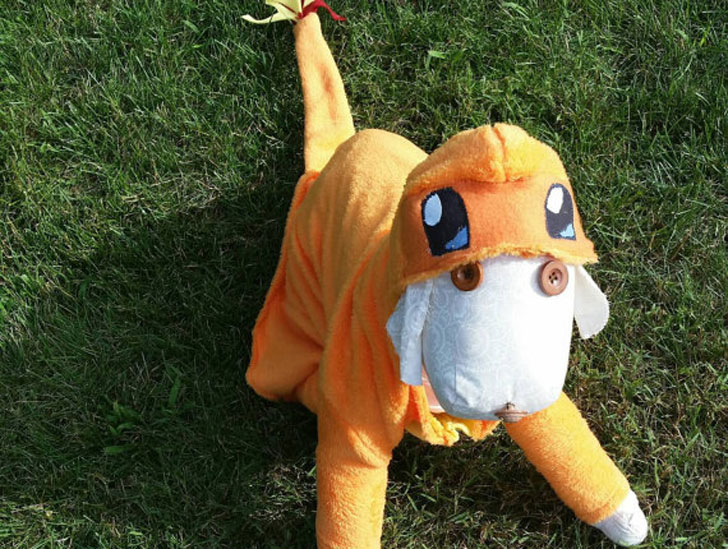 Charmander Pokemon Halloween Dog Costume