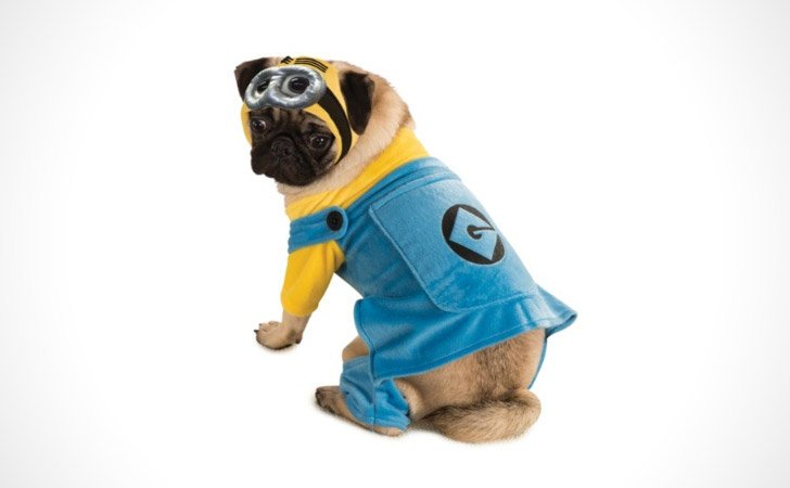 Despicable Me Dog Costume - Pet Costumes For Dogs