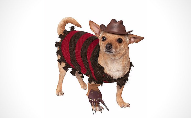 Freddy Kreuger Dog Costume - Pet Costumes For Dogs