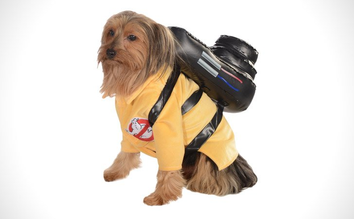 Ghost Busters Dog Costume