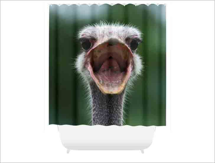 Grumpy Ostrich Shower Curtain