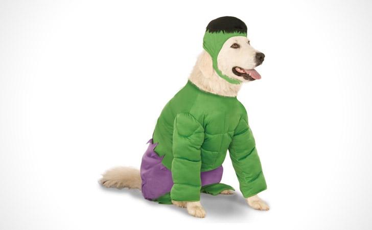Hulk Dog Costume