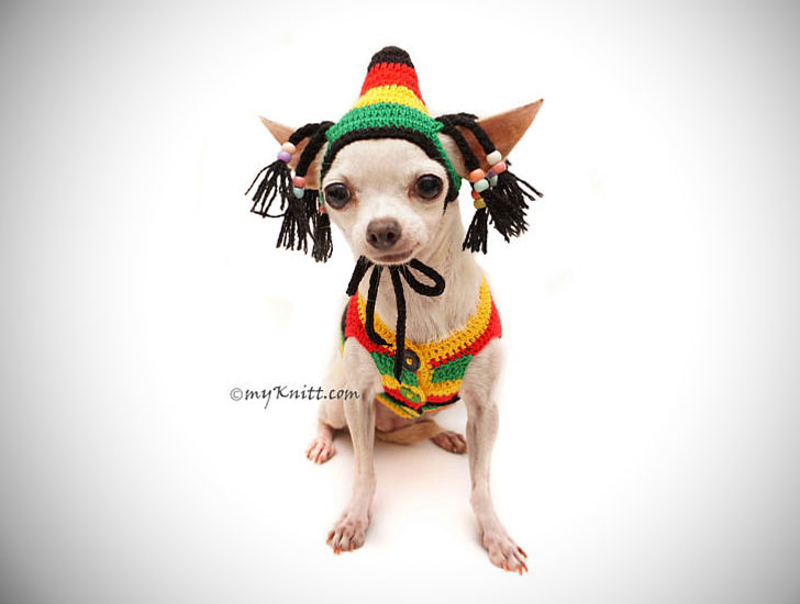 Rastafarian Dog Costume