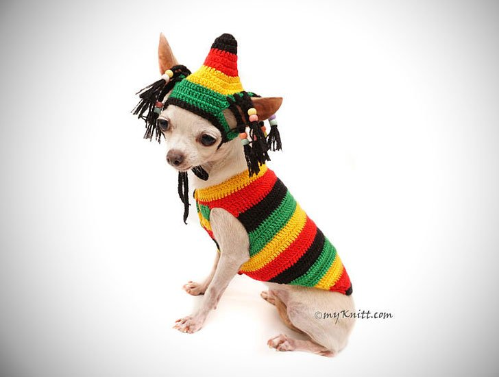 Rastafarian Dog Costume
