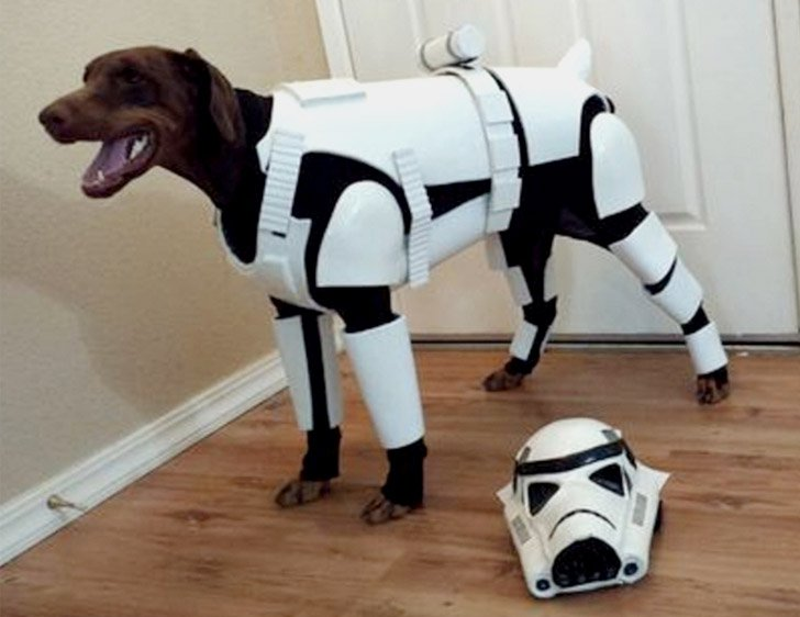 Stormtrooper Dog Costume - Pet Costumes For Dogs
