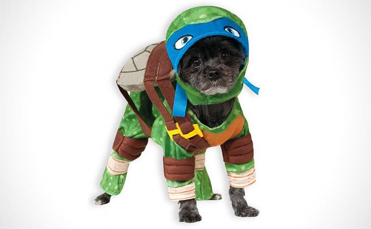 TMNT Leonardo Dog Costume