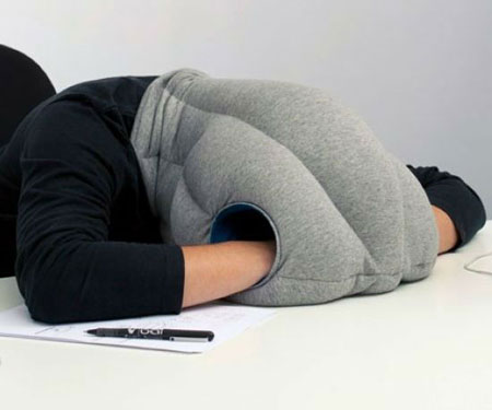 The Ostrich Napping Pillow