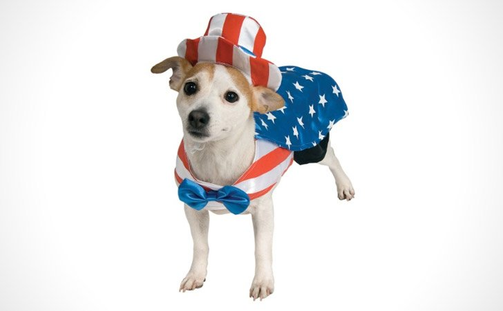 Uncle Sam Dog Costume - Pet Costumes For Dogs