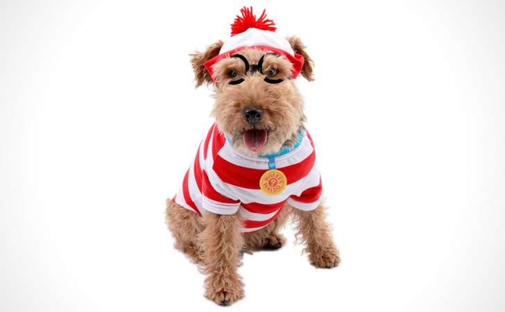 Where's Waldo Dog Costumes - Pet Costumes For Dogs