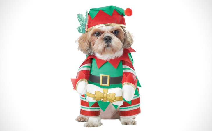 X-Mas Elf Costume