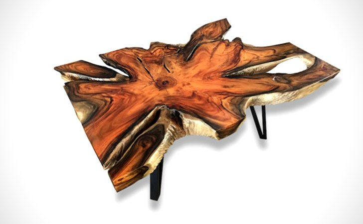 Asymmetrical Tree Root Coffee Table