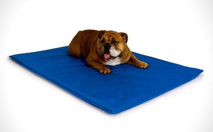 Dog Cooling Bed