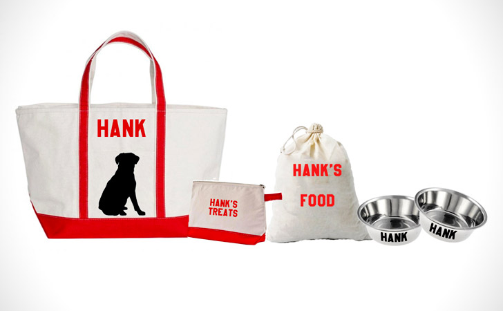 Personalized Dog Travel Bundle