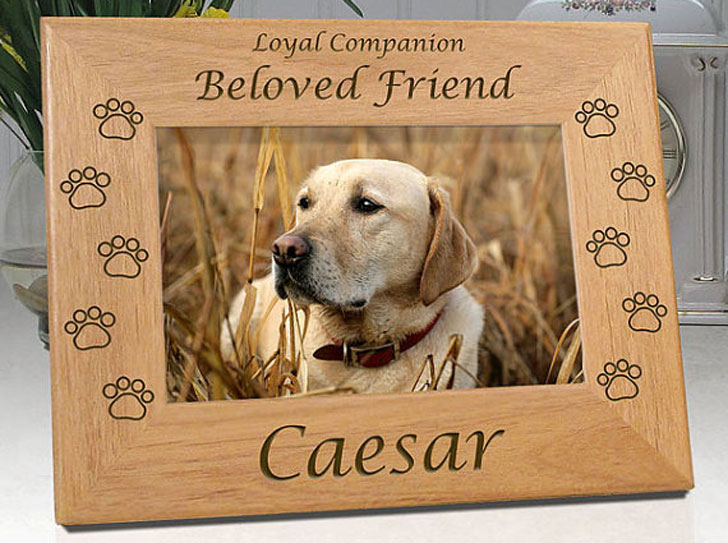 Personalized Pet Memorial Picture Frame Awesome Stuff 365